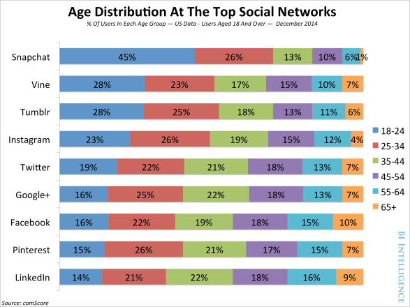 demographics-social-networks